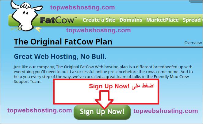 شرح حجز استضافة من fatcow